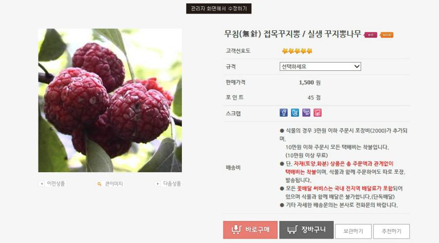 treeok_com_20140621_155827.jpg